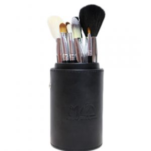 pro-brush-set